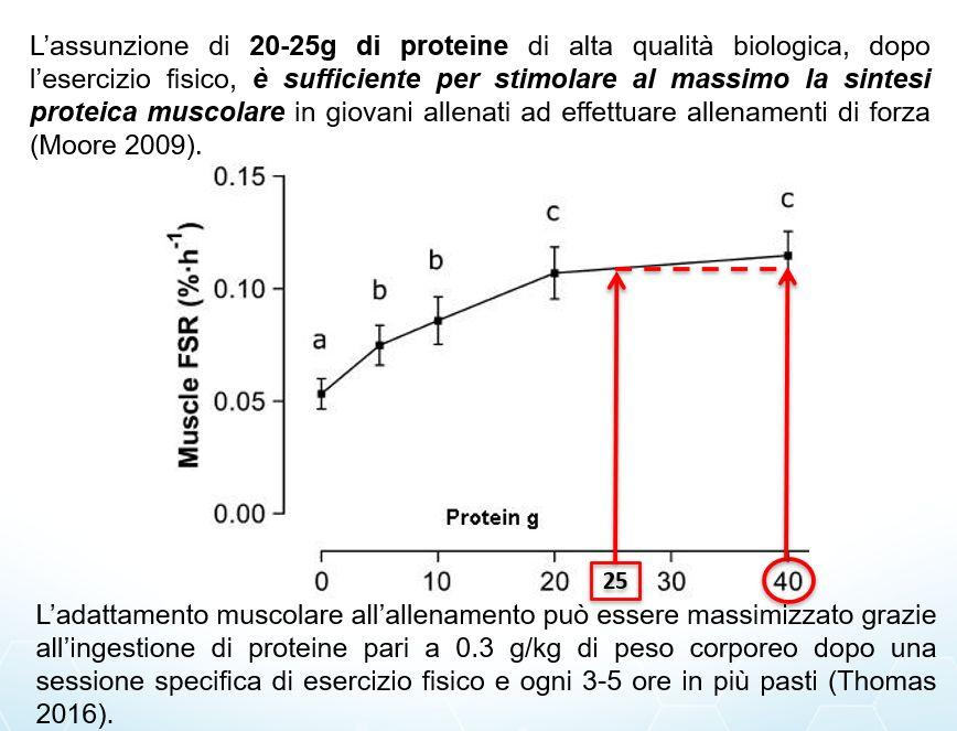 crossfitt forza proteine